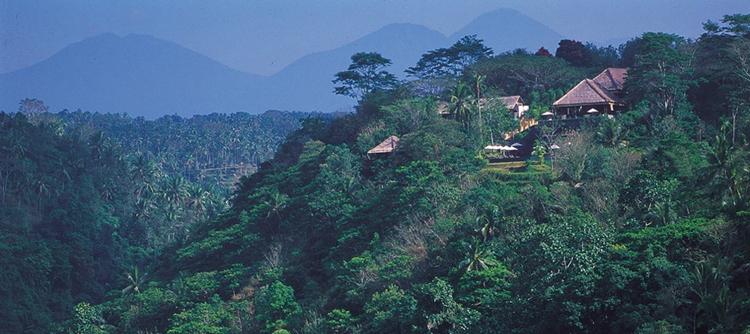 巴厘岛乌布阿丽拉酒店