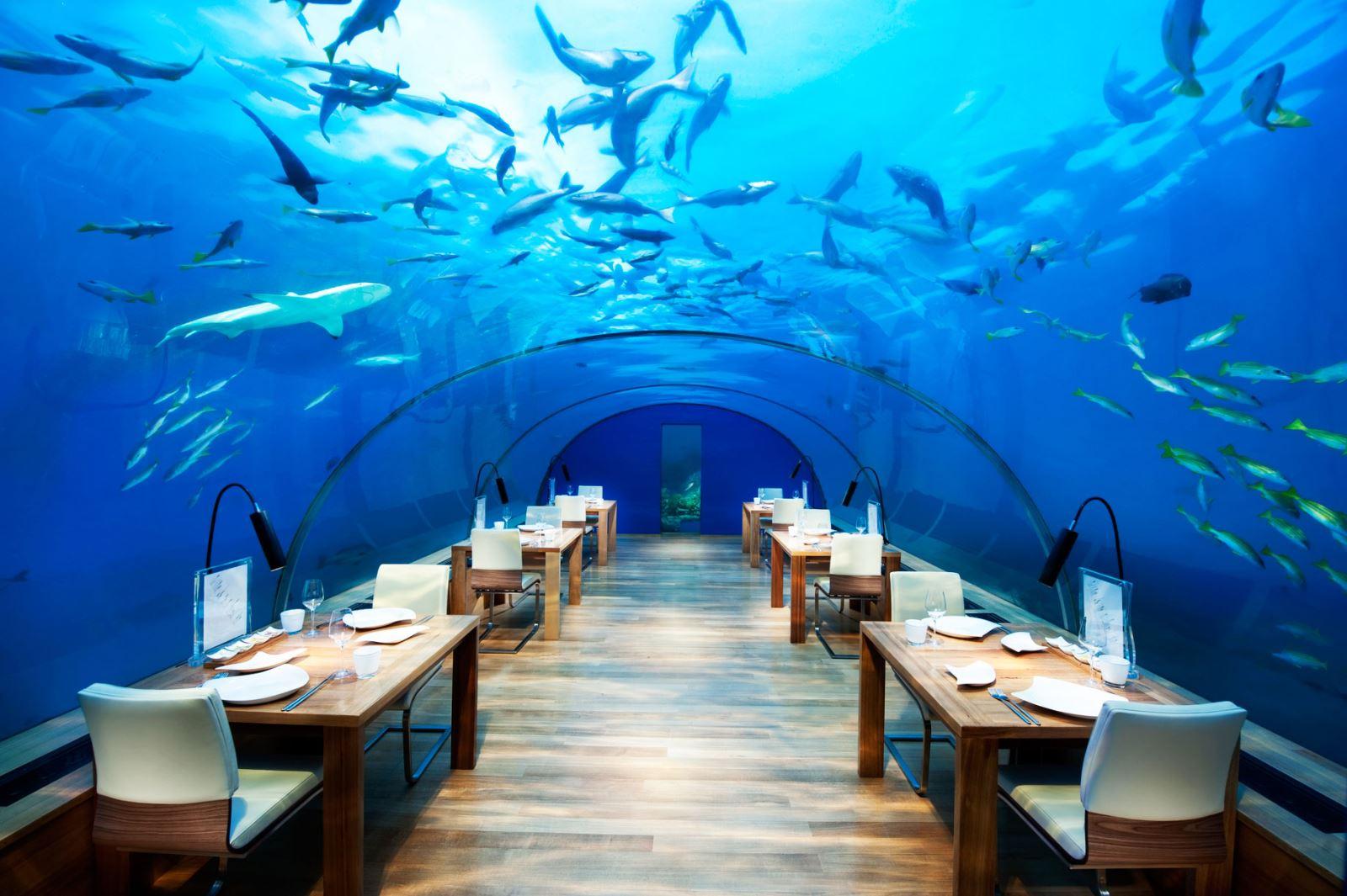 【海上栈桥 水下餐厅】马尔代夫港丽岛酒店6天4晚自由行